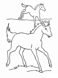 лошади на поляне раскраска