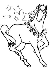 лошадь и звездочки