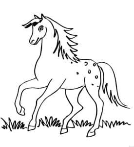 лошадка с гривой