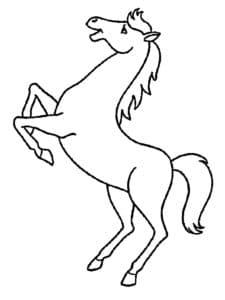 лошадь на задних лапах
