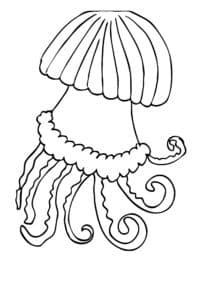 страшная медуза