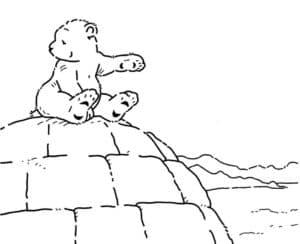 медведь на горе