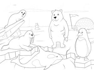животные аляски