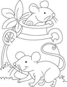 мышь в кувшине
