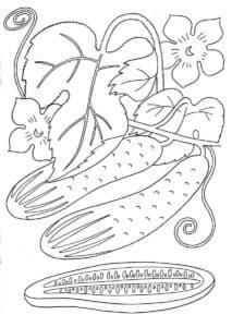 огурцы и листья