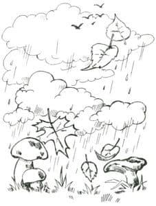 дождь грибы и листья
