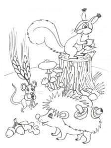 белочка ежик и мышка
