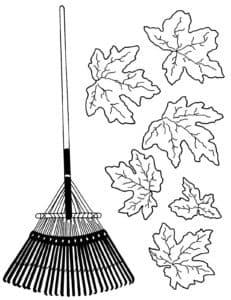 грабли и листья