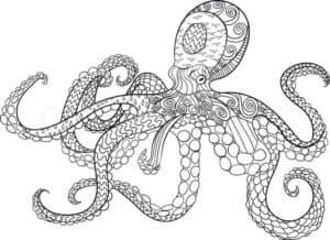 осьминог раскраска антистресс