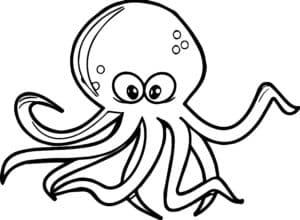 осьминог с глазами