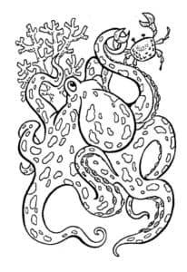 осьминог антистресс