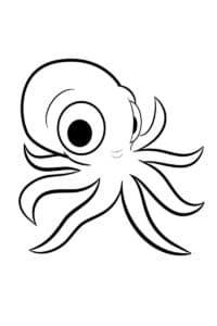 маленький осьминог с большими глазами