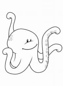 осьминог лысый
