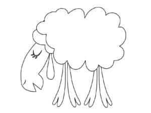 овца с длинной мордой