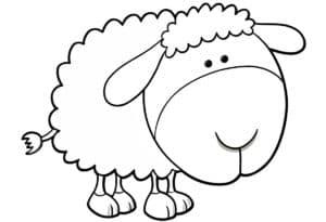 смешная овечка