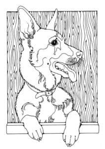 овчарка антистресс