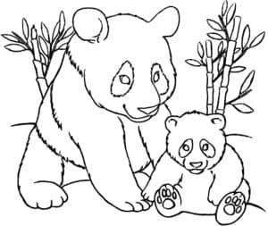 медвежата и бамбук