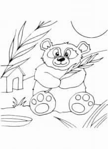 панда и будка