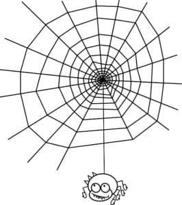 паучек на паутине раскраска