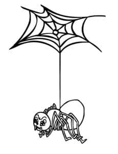 паук висит на паутине