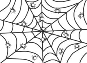 мелкие паучки на паутине