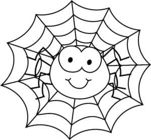 паутина и веселый паучек
