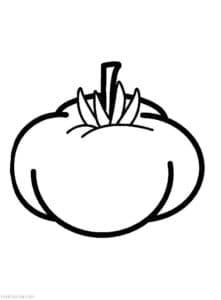 детская раскраска томат