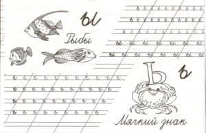 Рыбы и мягкий знак
