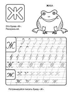 Жаба прописью