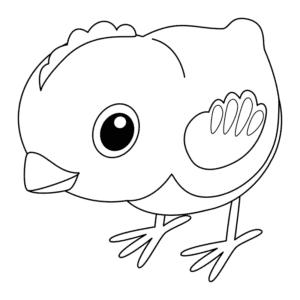 маленький птенец