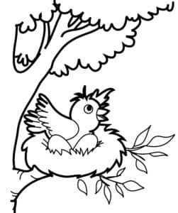 птенец в гнезде
