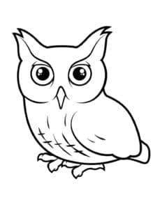 детская раскраска сова