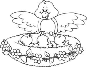 птичка и птенцы раскраска