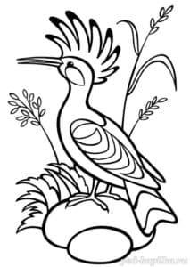 Птица с хохолком раскраска