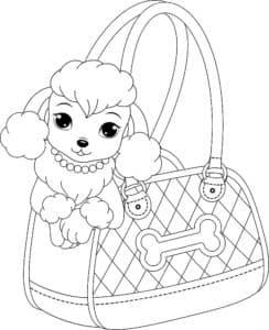 пудель в сумочке
