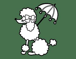 пудель под зонтиком