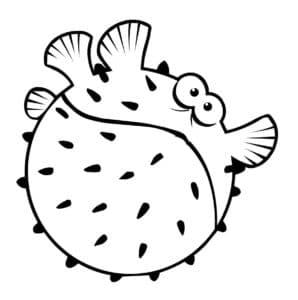 рыба еж