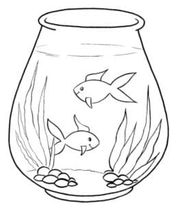 две рыбки в аквариуме