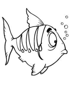 рыба и пузыри