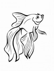 раскраска золотая рыбка