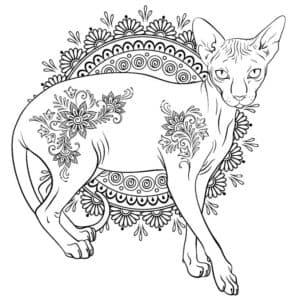 раскраска сфинкс кот с узорами