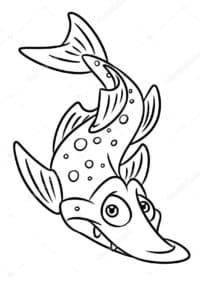 рыбка щука