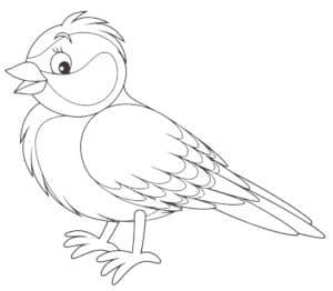 птица синица из мультика