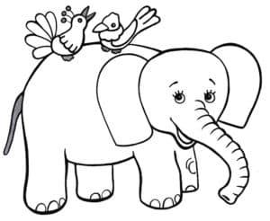 слоненок и птички