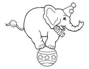 слоник на мяче