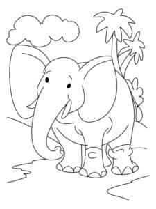 слон и пальмы