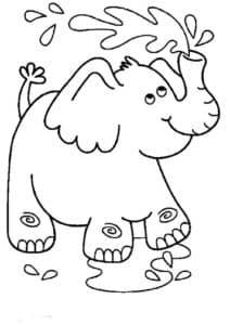 слон брызгает водой