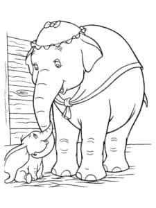 слон в плаще