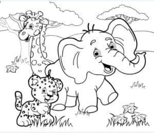 тигр жираф и слон