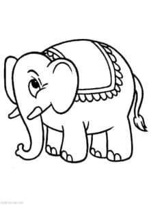 слон с ковриком на спине